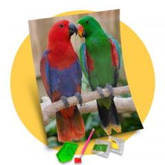 Tela Papagaios Amigos - Pintura com Diamantes
