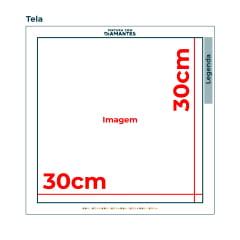 Tela Harmonia das cores - 30 x 30 cm - Diamante Redondo