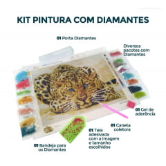 Pintura Com Diamantes - Tela Primavera na Janela- 38 x 53 cm - Diamante Redondo